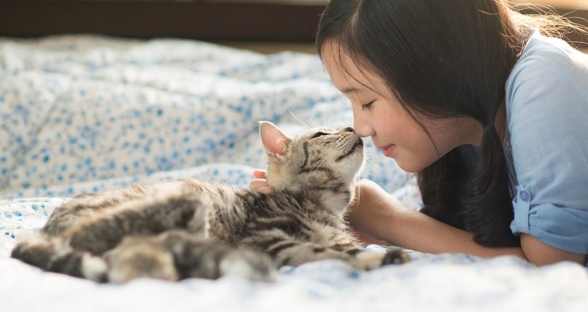 飼い主に挨拶をする猫