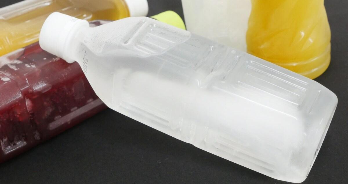 猫に水を凍らせたペットボトルを渡す