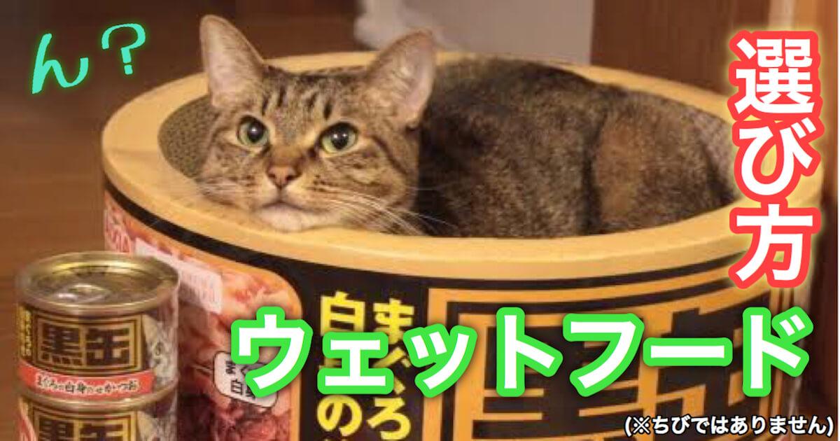 猫のウェットフードの選び方