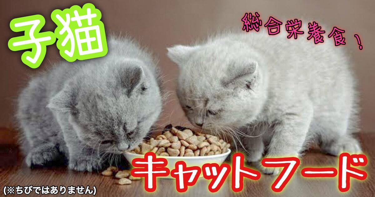 子猫のキャットフードは総合栄養食
