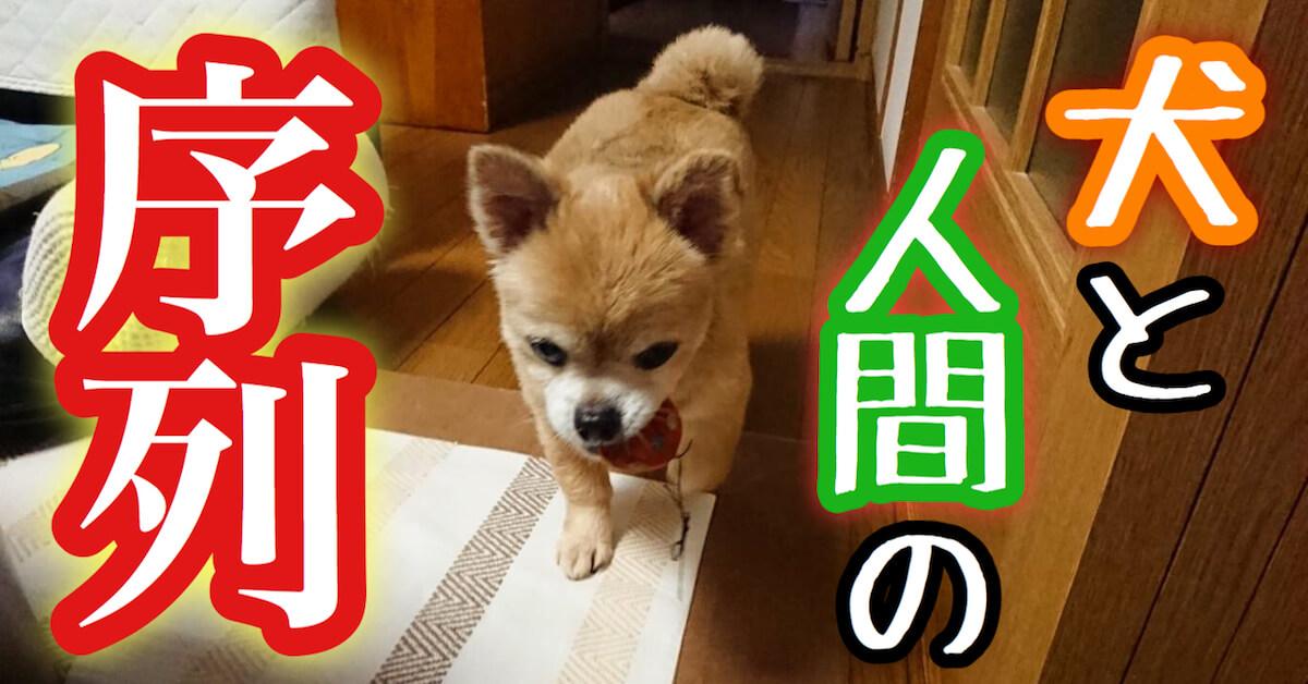 犬と人間の序列