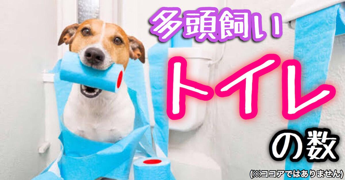 犬の多頭飼いでのトイレの数