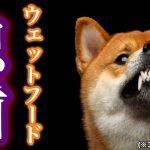 ウェットフードは犬が深刻な虫歯になるたった1つの原因