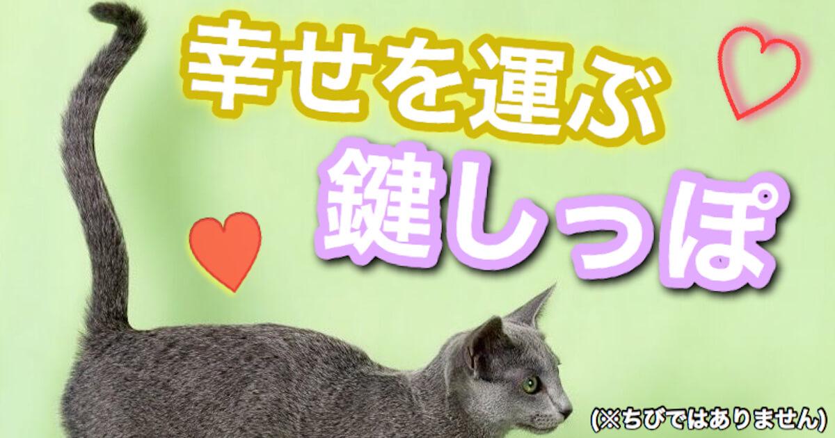 幸せを運ぶ猫の鍵しっぽ
